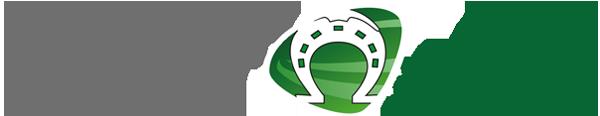 logo hambach shuttle
